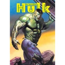 Картридж SEGA The Incredible Hulk