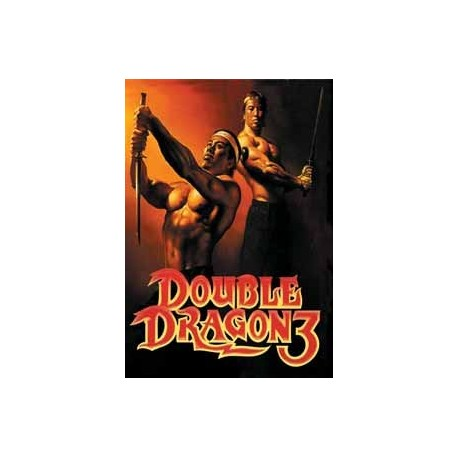 Картридж SEGA Double Dragon 3