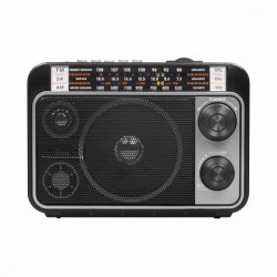 Радиориемник RITMIX RPR-171 (FM/SW/MW, MP3/USB/SD)